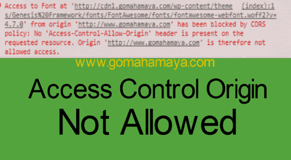 access-to-font-at-origin-has-been-blocked-by-CORS-pOLICY-no-access-control-allow-origin-1